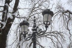 雪在公园在索非亚,保加利亚2014年12月29日 免版税库存照片