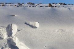 雪在冬天 库存图片