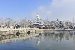 雪在北京 库存照片