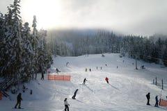 滑雪在吹口哨 免版税库存照片