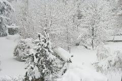 雪在城市 免版税库存照片