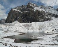 雪在夏天在西伯利亚 图库摄影
