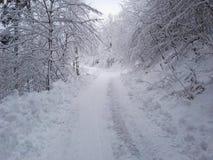 雪在德国 免版税库存图片
