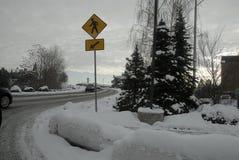 雪在斯波肯落 免版税库存照片