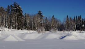雪在明尼苏达 库存照片