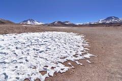雪在沙漠 库存照片