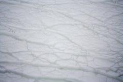 雪在海洋 免版税库存照片