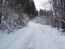 雪在热尔迈 图库摄影