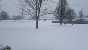 雪在纳稀威 库存图片