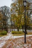 雪在10月在公园 库存图片