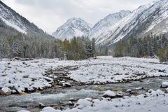 雪在9月 免版税库存照片