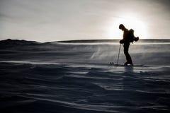 滑雪在冻波浪 图库摄影