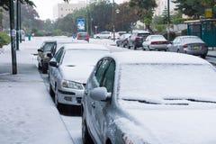 雪在以色列。2013年. 免版税库存图片
