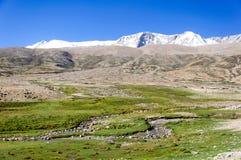 雪在Changthang高原,拉达克,查谟和克什米尔,印度的山脉 库存照片
