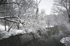 在国家小河的雪 免版税图库摄影