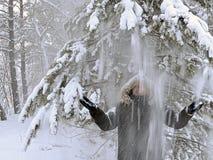 雪在man& x27落; 从杉木的s头 免版税库存照片