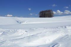 雪场面在日本 免版税库存照片