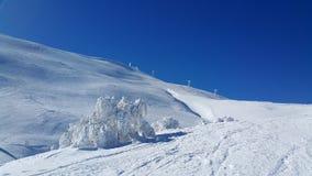 滑雪场面 免版税库存照片