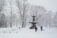 雪场面 库存照片