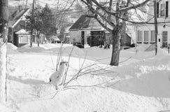 雪场面 库存图片