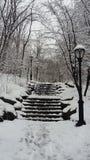 雪坚硬风暴在中央公园 库存图片