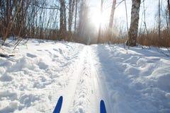 滑雪坡道 免版税图库摄影