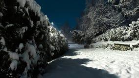 雪夜路  免版税图库摄影