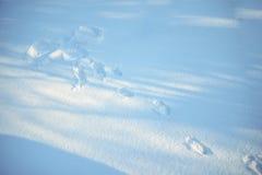 雪天使在晴天 库存图片