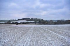 雪天在英国 库存照片
