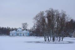 雪天在11月 免版税库存图片