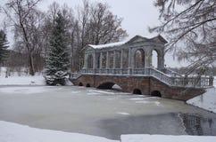 雪天在11月 免版税图库摄影