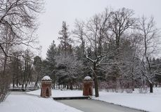 雪天在11月 免版税库存照片