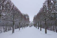 雪天在11月 库存照片