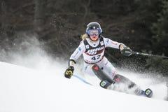 雪女王战利品2019年-夫人障碍滑雪 免版税库存图片