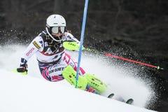 雪女王战利品2019年-夫人障碍滑雪 库存照片