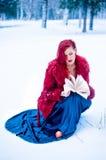雪女王/王后冬天yong女孩在森林里 库存照片