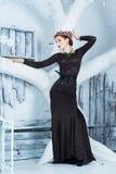 雪女王/王后, 12月 长的礼服的端庄的妇女 冬天 免版税库存图片