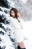 雪女王/王后 冬天妇女的纵向 图库摄影