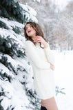 雪女王/王后 冬天妇女的纵向 库存图片