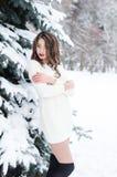 雪女王/王后 冬天妇女的纵向 免版税库存图片