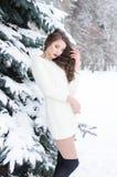 雪女王/王后 冬天妇女的纵向 库存照片