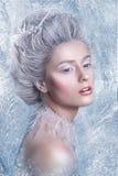 雪女王/王后 幻想女孩画象 冬天神仙画象 有创造性的银色艺术性的构成的少妇 冬天画象 库存图片