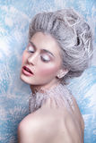 雪女王/王后 幻想女孩画象 冬天神仙画象 有创造性的银色艺术性的构成的少妇 冬天画象 免版税库存图片