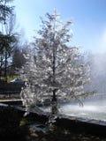 雪季节的结尾 免版税库存图片