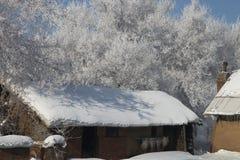 雪小屋 库存照片