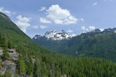 雪山和树 免版税库存照片