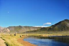 雪山和湖 库存图片