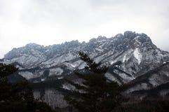 雪岳山山 30更改的卫兵7月韩国国王好朋友s汉城南部 库存照片
