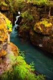 雪崩小河在冰川国家公园,蒙大拿 免版税库存照片