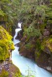 雪崩峡谷在冰川国家公园 免版税库存照片